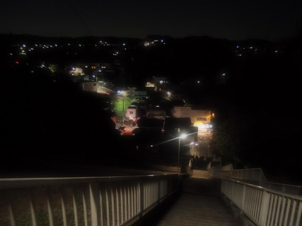 鴨居の夜景
